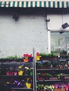 brooklyn flower shop | love wins