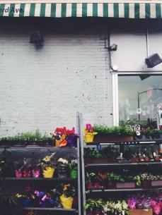 brooklyn flower shop | love wins