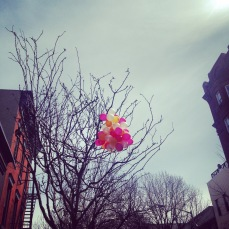 brooklyn balloons | love wins