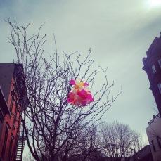 brooklyn balloons | love wins
