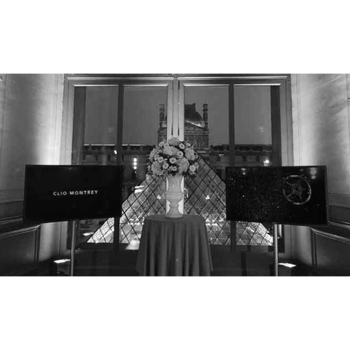 my work at the louvre bw