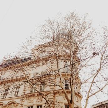 balcony by clio em